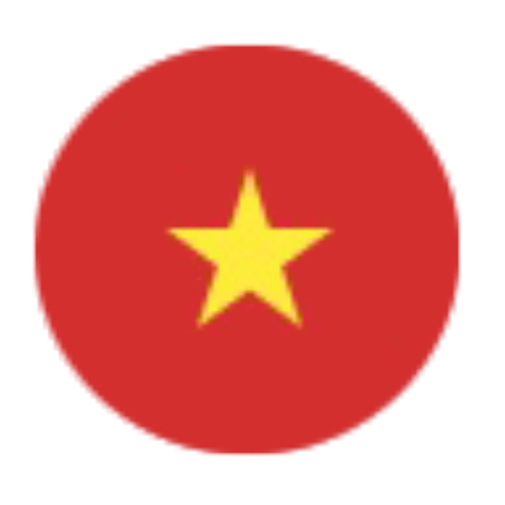 Viet Nam Icon